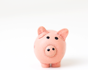 PINK CLAY PIG ON WHITE BACKGROUND OVERDRAFT PROTECTION